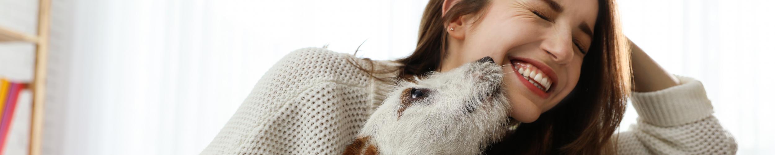 Tips voor eigenaars van een huisdier